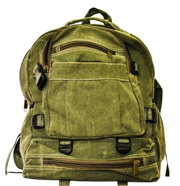 Picture of a backpack to carry paperwork