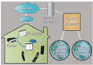 Figure 1. Femtocell Application